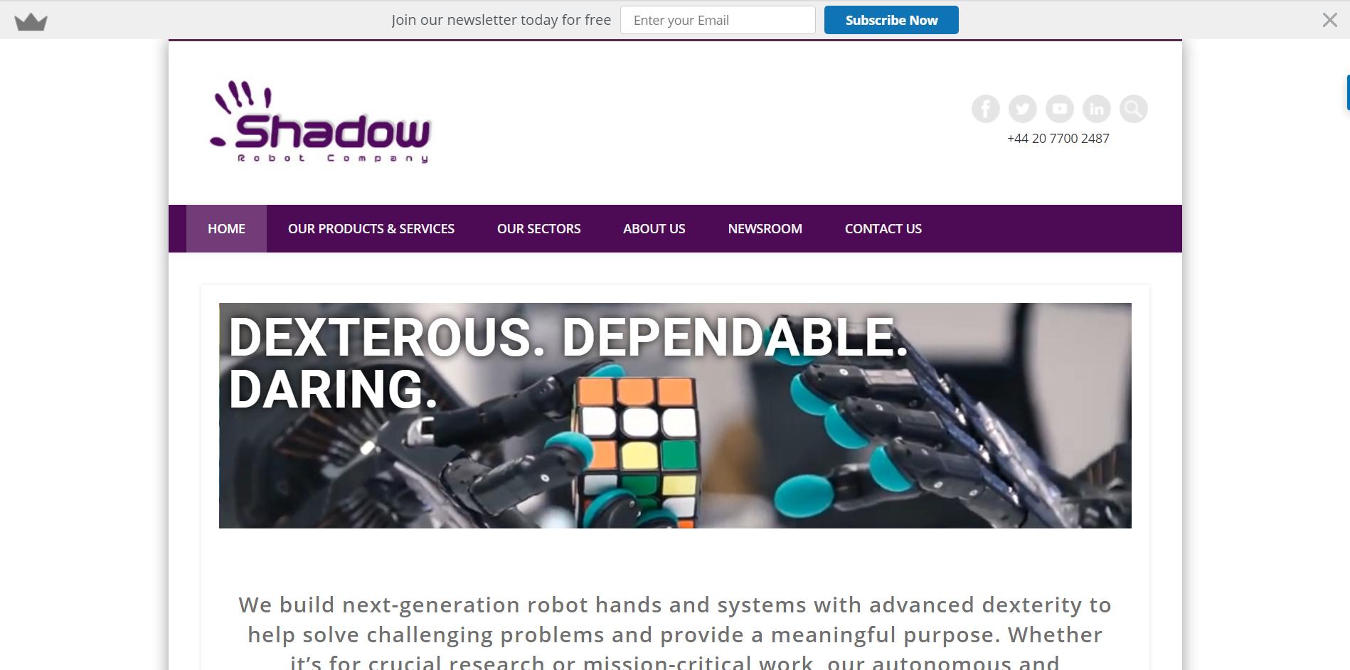 Shadow Robots