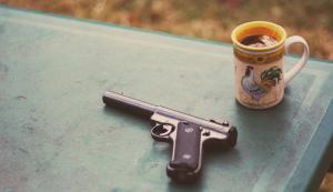 History of gun registration in US