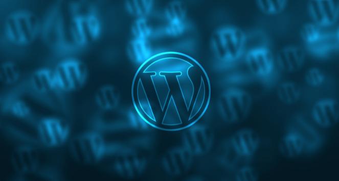 Maintaining a WordPress website