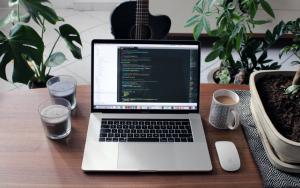 WordPress Agency benefits