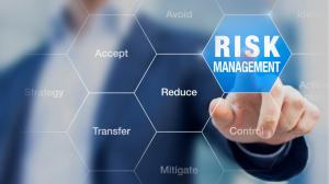Identify Risks